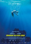 Záhada Silver Lake